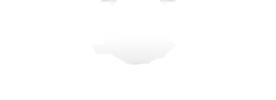 Logo Blog Singe